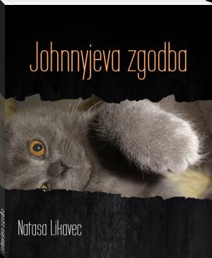e-knjiga Johnnyjeva zgodba
